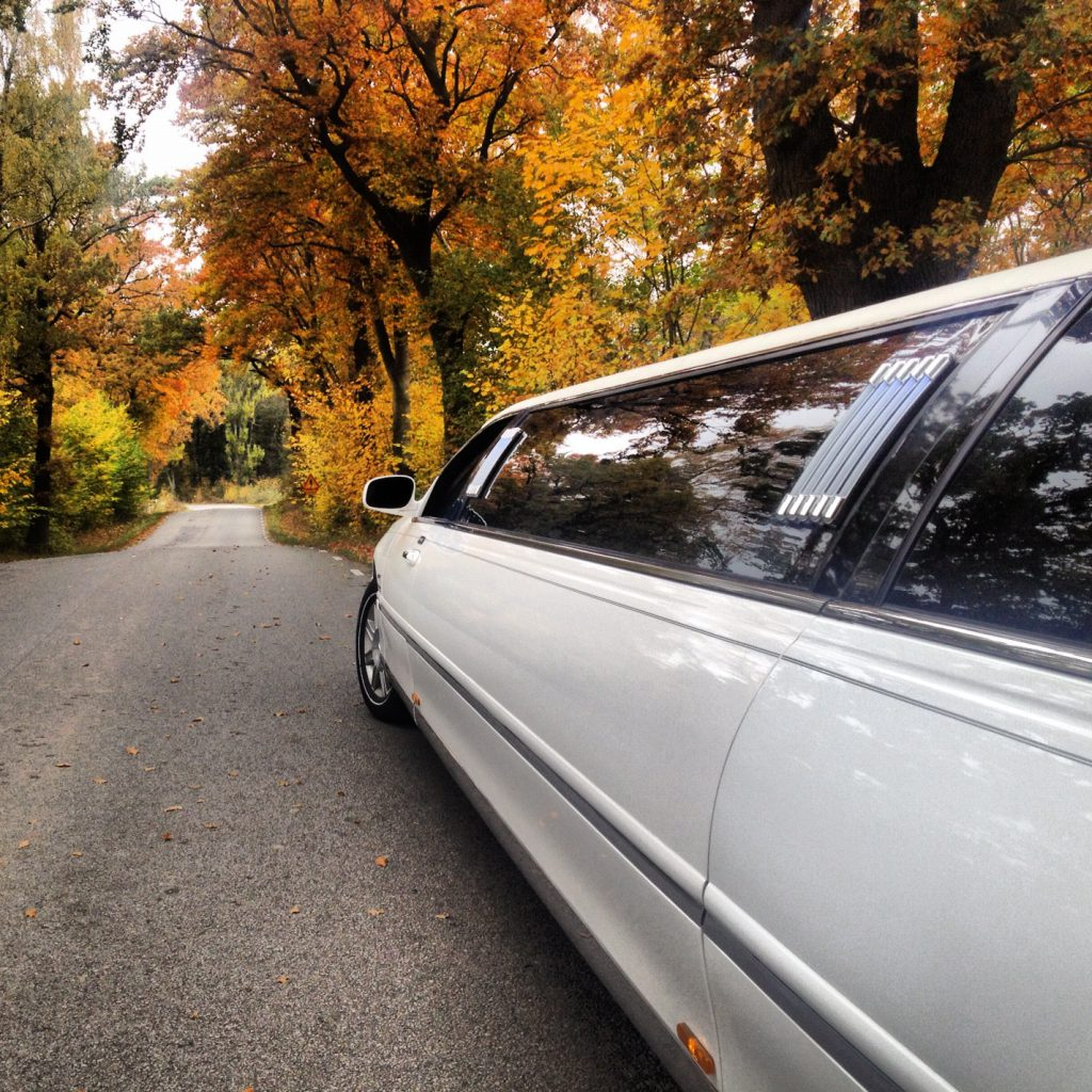 autumn limo